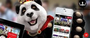 Spielspaß bei Royal Panda nun auch für Android Nutzer